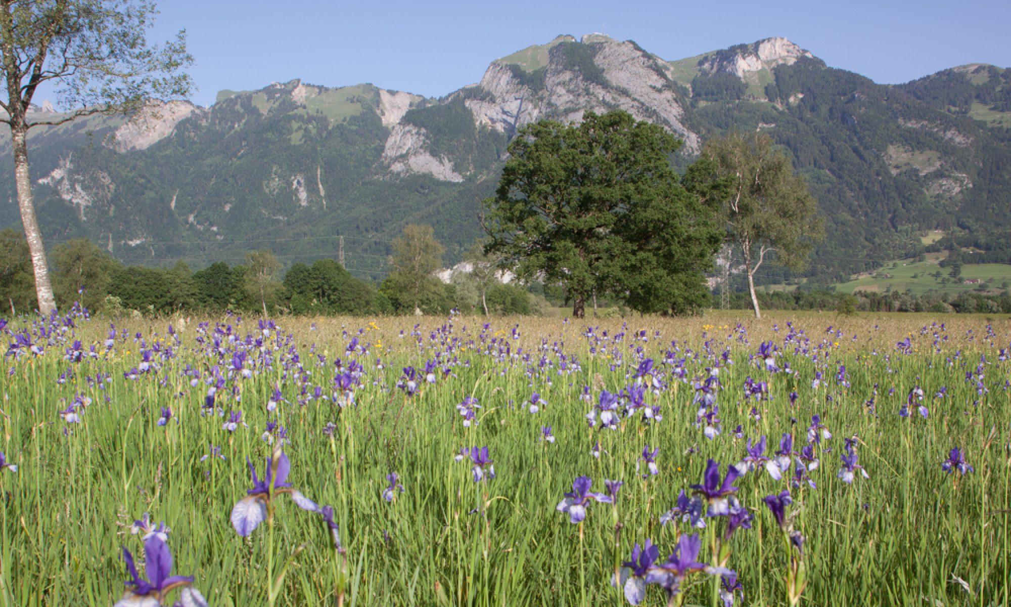 Ornithologischer Verein Liechtenstein Unterland